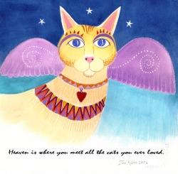 angel cat flat